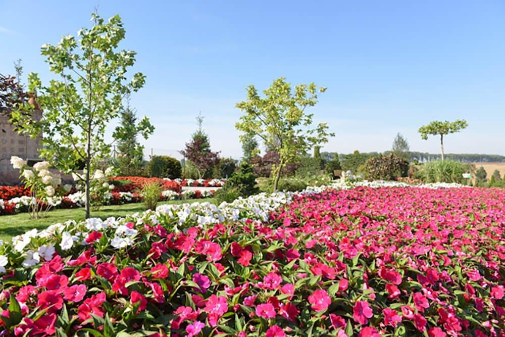 Aranżacje kwiatowe w Minieurolandzie