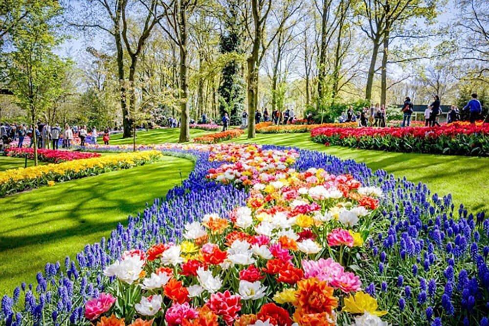 Keukenhof – ogród i jedna z największych wiosennych atrakcji Holandii