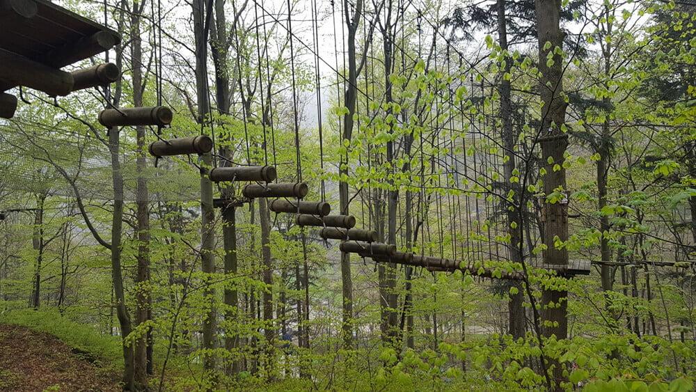 Park Leśny Skalisko Atrakcje dla rodzin kotlina kłodzka, Atrakcje dla dzieci
