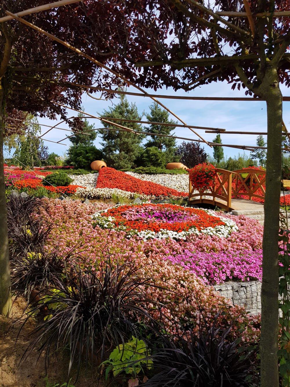 kotlina kłodzka ogród japoński
